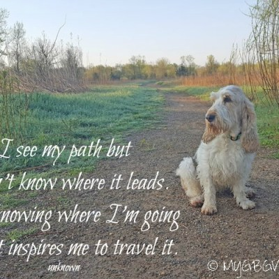 Traveling My Path