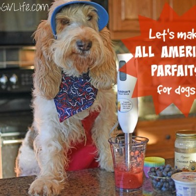 Emma Whips Up All American Parfaits For Dogs