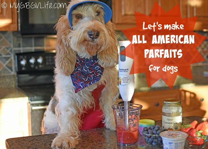 My GBGV Life Emma Whips Up All American Parfaits For Dogs