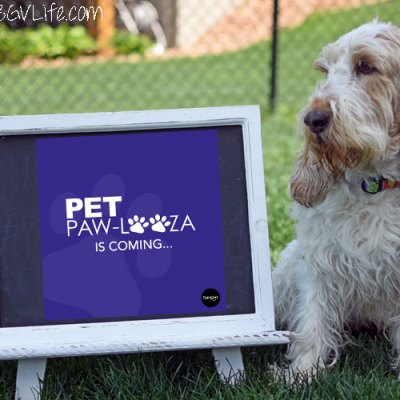 Attention Please! Announcing The Super Fun Pet Paw-Looza Event!