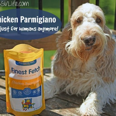Chicken Parmigiano – Not Just For Humans Anymore!
