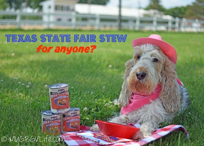 My GBGV Life Fair Food Texas Style - Don't Mess With Texas!