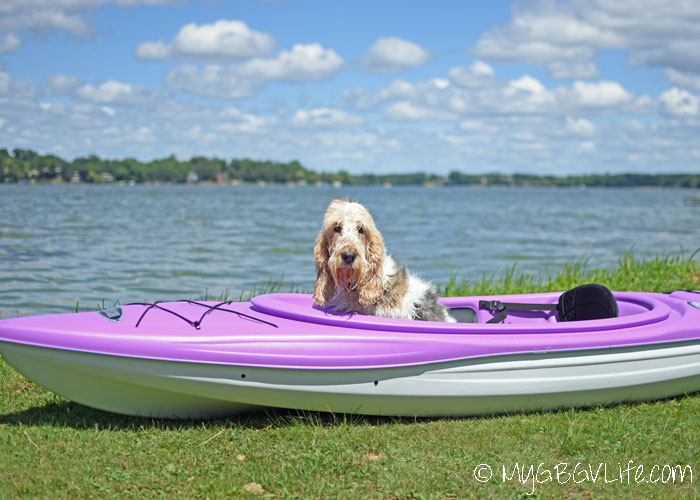 My GBGV Life 7 Dog Safety Tips At The Lake