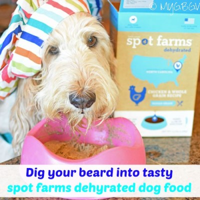 Dehydrated Dog Food From Spot Farms – Beard Licking Good!