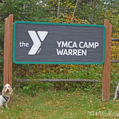 What Happens At Camp Warren Stays At Camp Warren Unless…