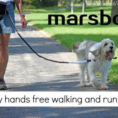 Hands Free Walking And Running With marsboy