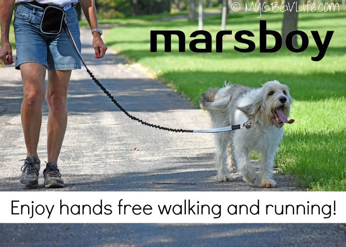 My GBGV Life Hands Free Walking And Running With marsboy