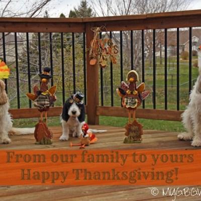 Happy Thanksgiving 2016 – Gobble Gobble Til You Wobble Wobble!