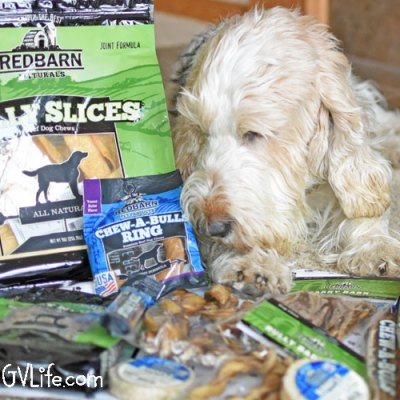 Almost Too Many Dog Chews To Choose From – Redbarn