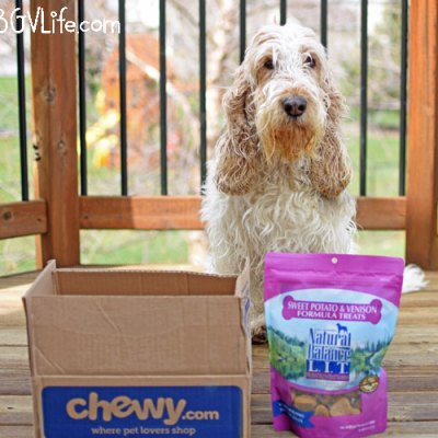 April Showers Bring Tasty Dog Treats #ChewyInfluencer