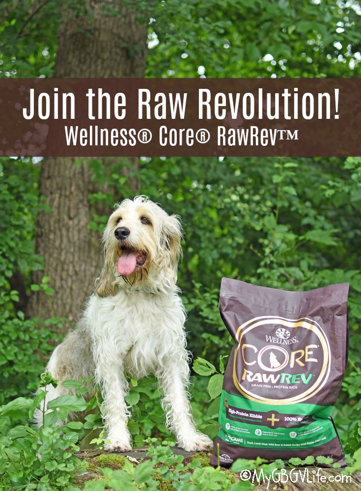 My GBGV Life Welcome To The Raw Revolution - Feed Dogs The Diet they Crave!