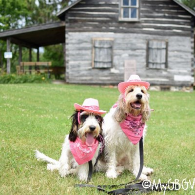 The Cowgirls At The Ranch