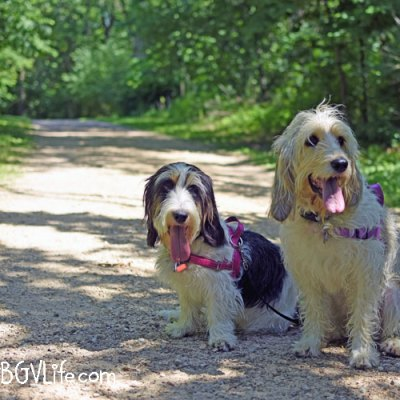 Let's Go For A Walk At Blackhawk Lake