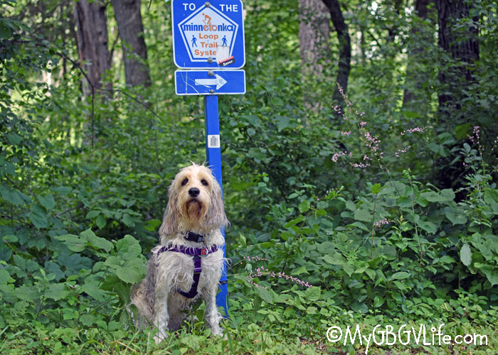 My GBGV Life The Minnetonka Loop Trail System - Visiting Minnehaha Creek