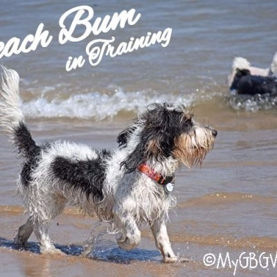 Beach Bum In Training