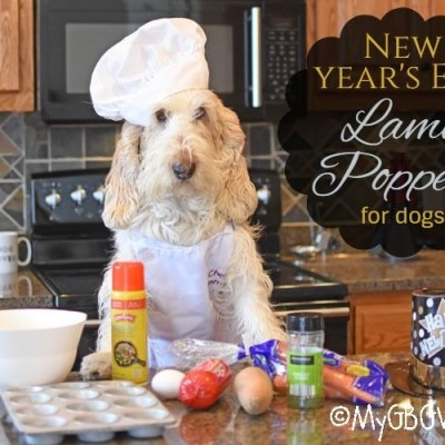 New Year's Eve Lamb Poppers For Dogs