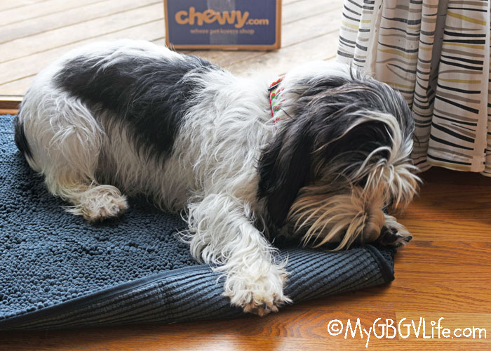 My GBGV Life Clean House Doormat Means Clean Paws! #ChewyInfluencer