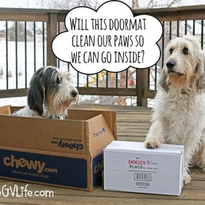 Clean House Doormat Means Clean Paws! #ChewyInfluencer