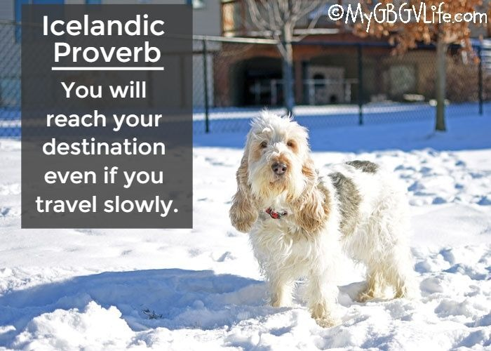 An Icelandic Proverb Made For Me