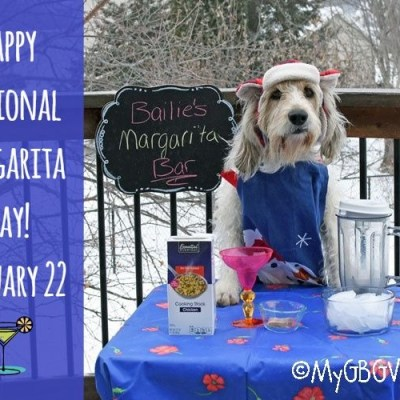 National Margarita Day – Make Frozen Yellow Snow Margaritas For Dogs