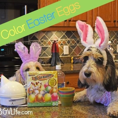 It's Time To Color Easter Eggs!