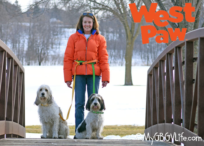 Fun, Innovative Collars and Leashes for Spring #WestPawGo #Jaunts