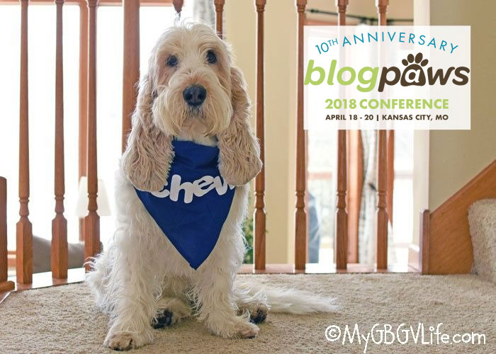 My GBGV Life What's In Your Bag? Packing For BlogPaws 2018