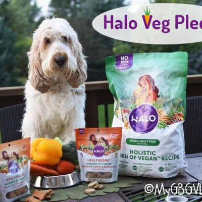 Has Your Dog Joined the #MeatlessMonday Movement? Maybe She Should!