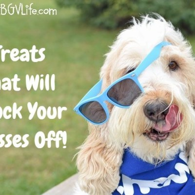 Holistic Dog Treats That Will Knock Your Glasses Off – #ChewyInfluencer