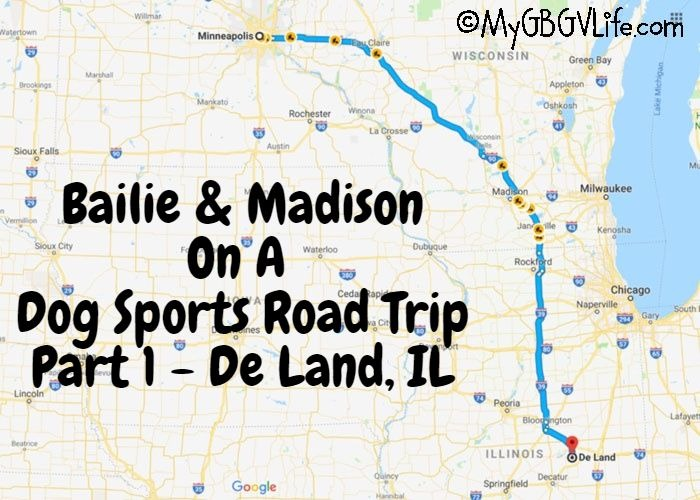 My GBGV Life A Dog Sports Road Trip - Part 1 Deland, IL