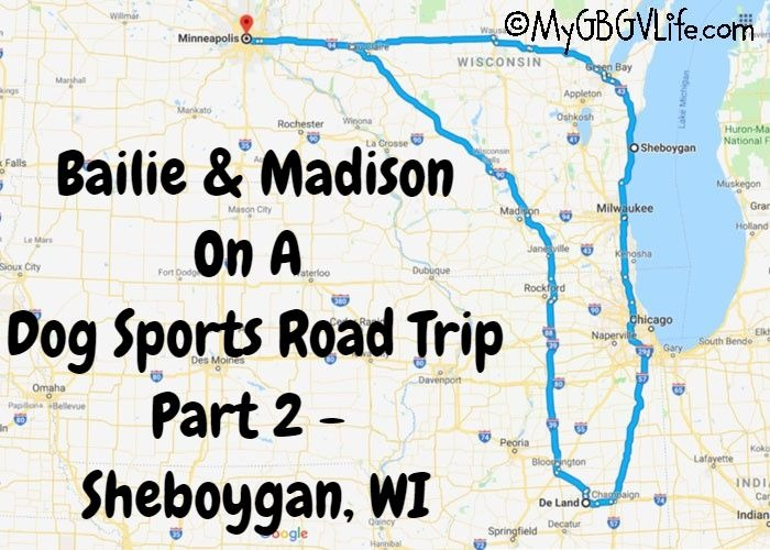 My GBGV Life A Dog Sports Road Trip - Part 2 Sheboygan, WI