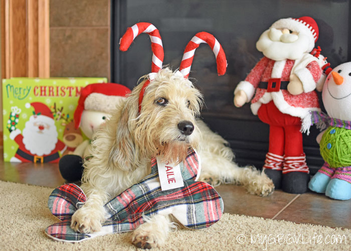 My GBGV Life Dogs And Cats Deserve ChristmasClaude Stockings