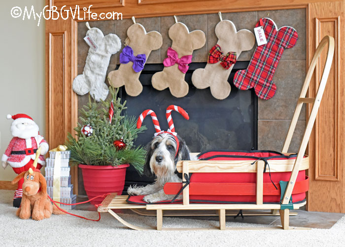 My GBGV Life Every Dog And Cat Deserves A ChristmasClaude Stocking