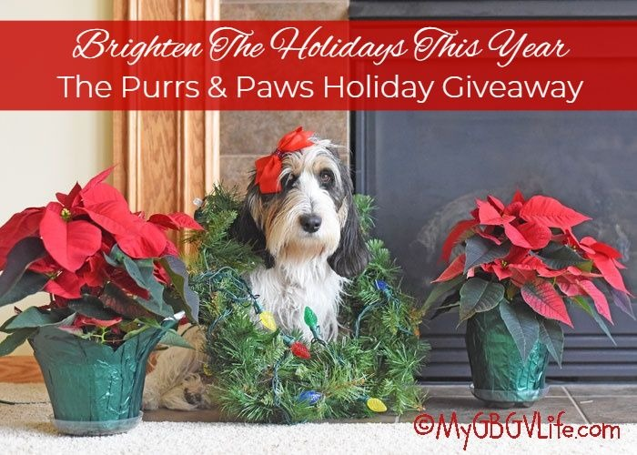 My GBGV Life The Purrs & Paws Holiday Giveaway With $500 In Prizes!