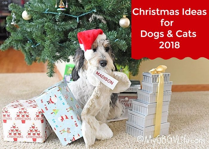 Gift Ideas For Dogs And Even Cats For The Holidays