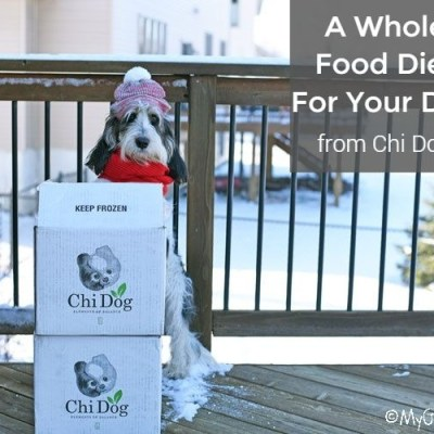 A Whole Food Diet For Your Dog From Chi Dog