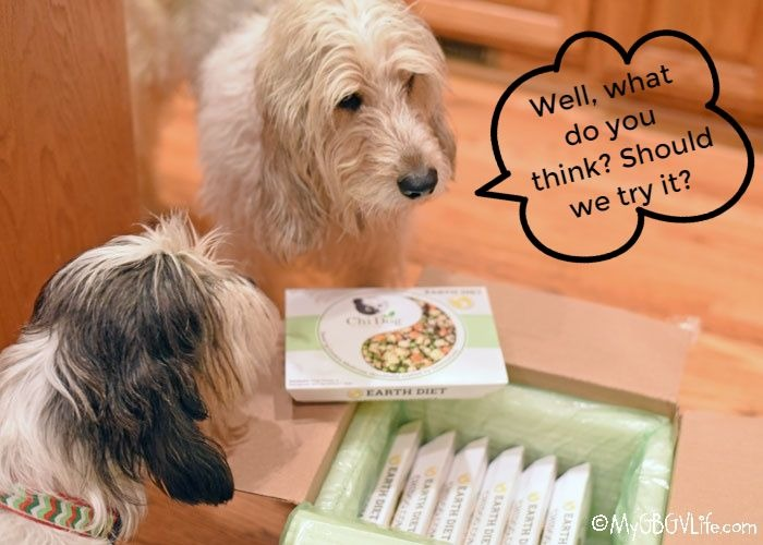 My GBGV Life A Whole Food Diet For Your Dog From Chi Pet