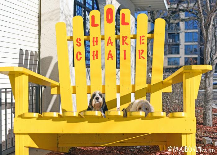 My GBGV Life An Adirondack Share Chair, LOL!