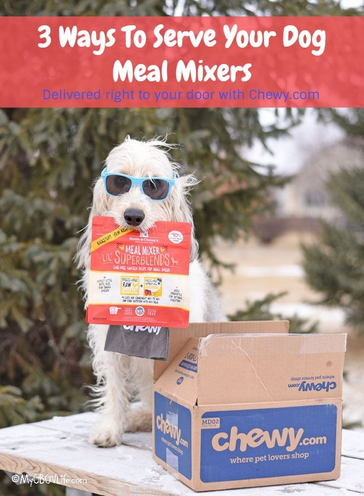 My GBGV Life 3 Ways To Serve Your Dog Meal Mixers #ChewyInfluencer