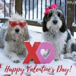 My GBGV Life Happy Valentines Day 2019!