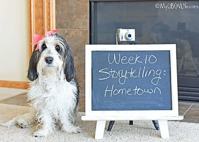 My GBGV Life Story Telling - The Story Of Your Hometown #DogwoodWeek10