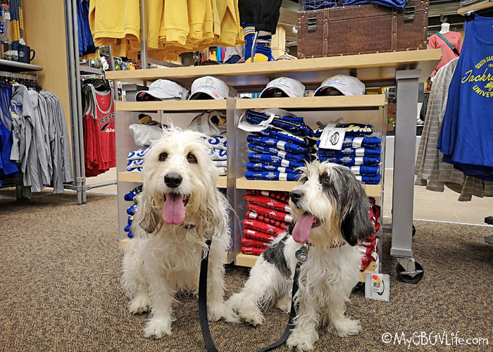 My GBGV Life Dog Friendly Shopping At Scheels In Sioux Falls