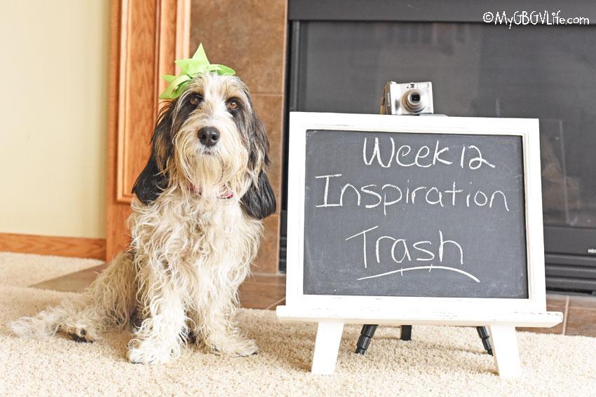 My GBGV Life Inspiration - Trash #DogwoodWeek12
