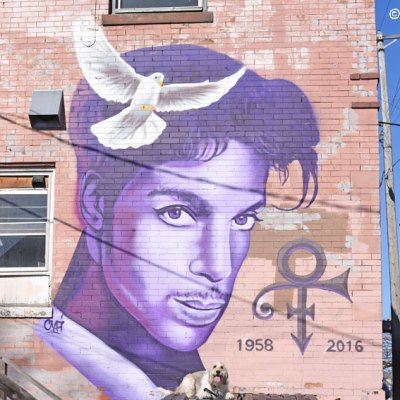Purple Girl Celebrates Prince With Another Mural