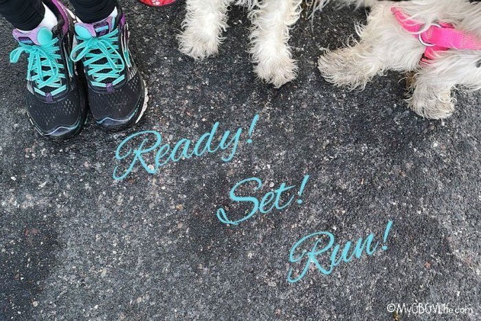 5 Tips For Running Safely With Your Dog This Spring