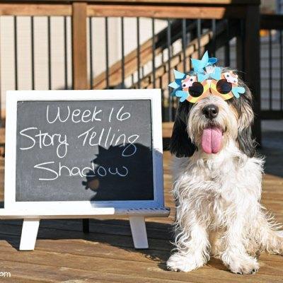 My GBGV Life Story Telling - Shadow #DogwoodWeek16
