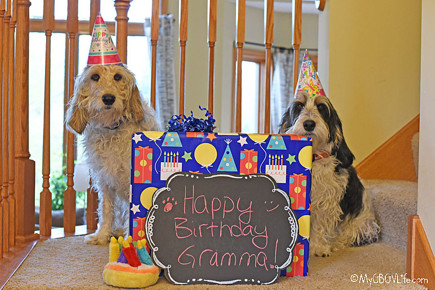 My GBGV Life Happy Birthday Today To Our Special Gramma!