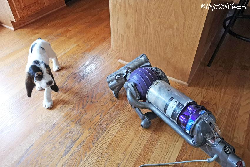 My GBGV Life vacuum cleaner
