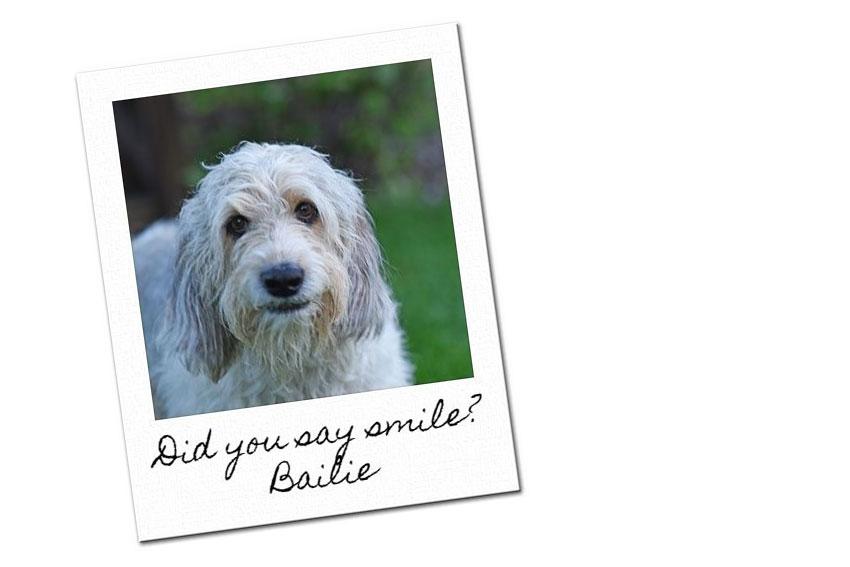 My GBGV Life Bailie smile