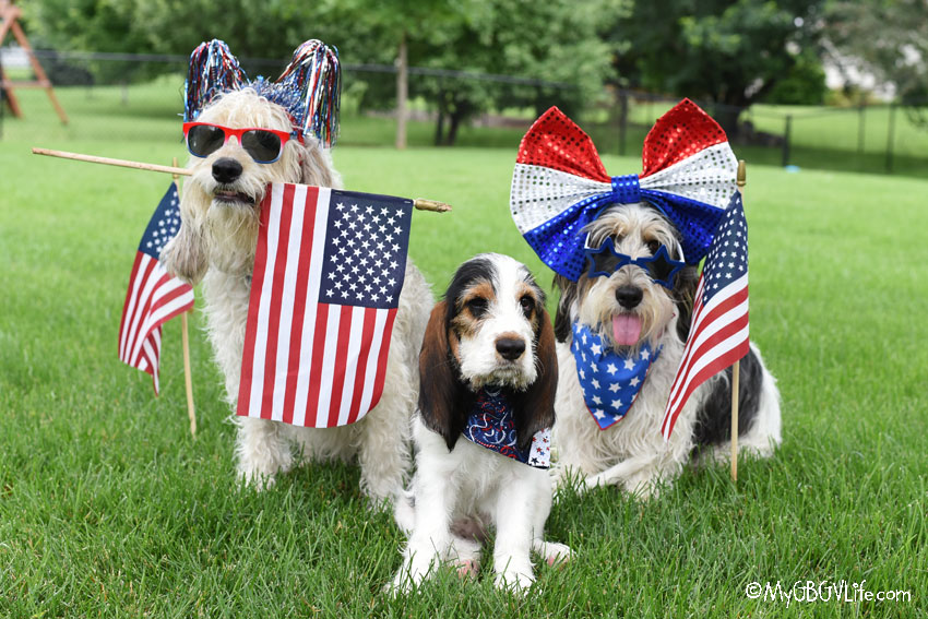 My GBGV Life Happy Birthday, America! Enjoy The Holiday!